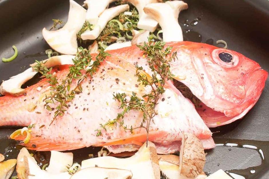 fisch aus dem backofen rezepte tipps und anleitung Alfonsino Fisch aus dem Backofen. Rezept Bild von Thomas Sixt.