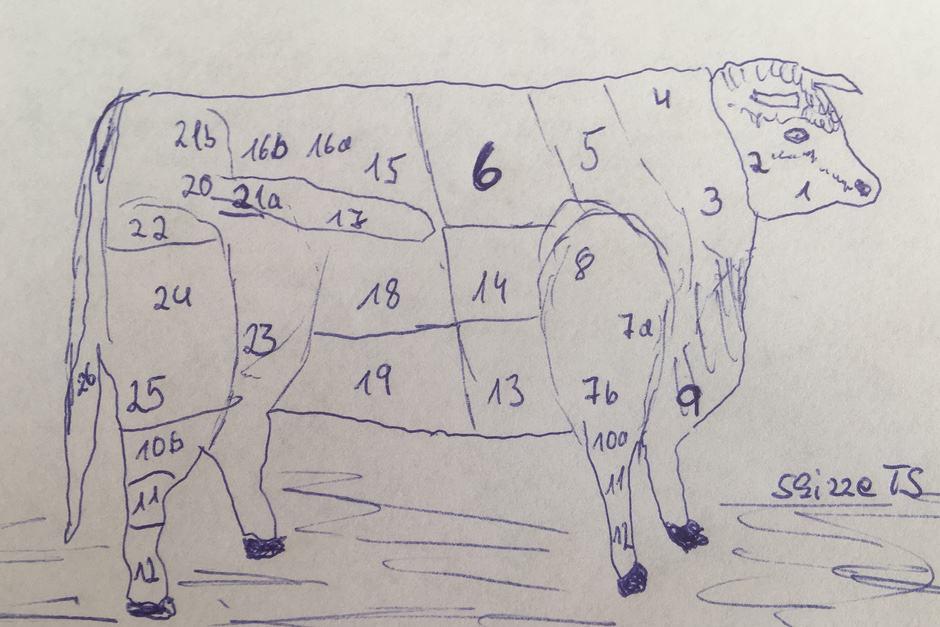 Fleischzuschnitt Rind, wo ist das Rib Eye Steak? Diese Frage beantwortet die Grafik.