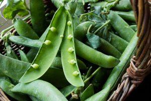 Frische Erbsen vom Markt und aus dem Garten.